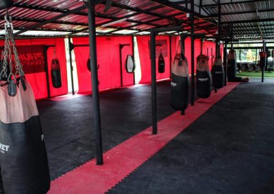 3 phuket fight club fighters and trainers champions gym